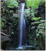 Waterfall of the donation