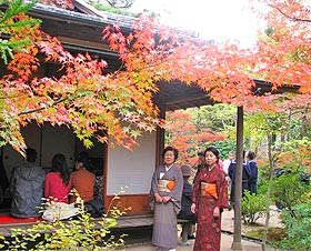 """A tea party"" of the colored leaves Festival"