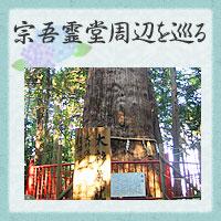 Sogo Reido Hydrangea Festival  FEEL Narita Official Website